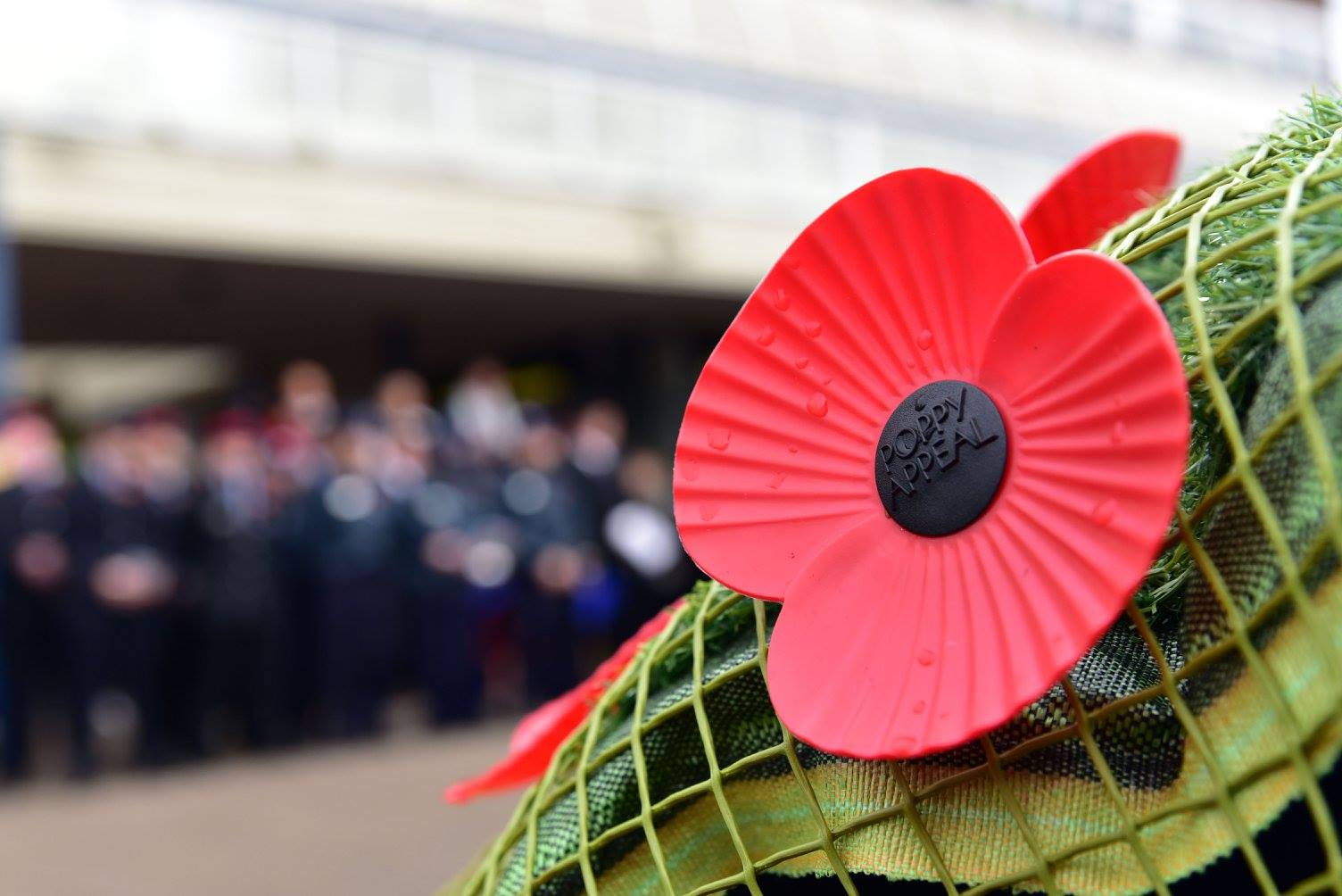 Remembrance Sunday 11/11/16
